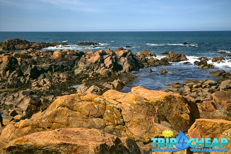 Ocean w Porto
