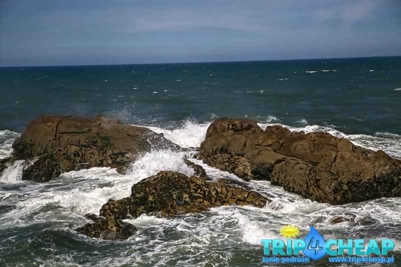 Ocean-Porto
