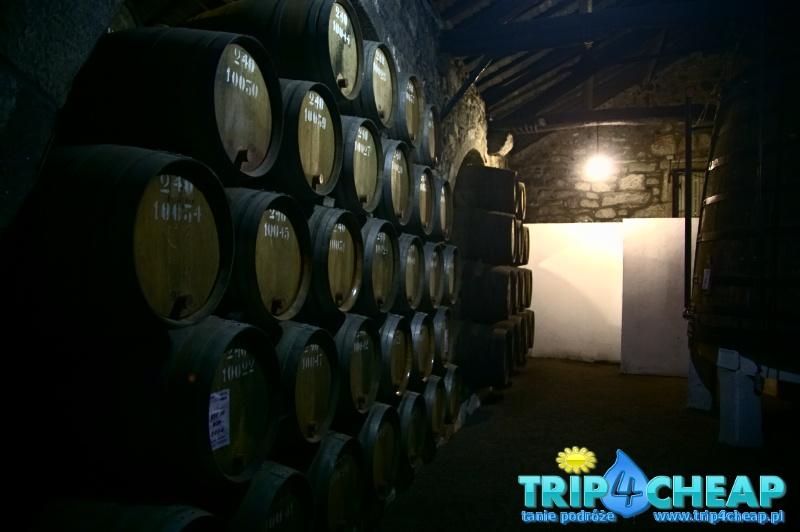 Winiarnia w Porto