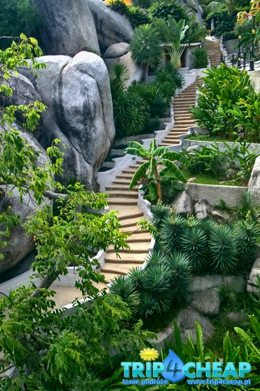 Schody na terenie hotelu, Koh Tao